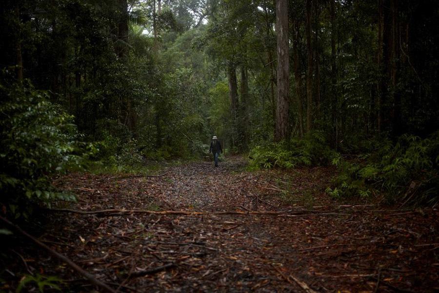 Bước ngoặt cuộc đời kẻ sống lang thang trong rừng thành giảng viên đại học