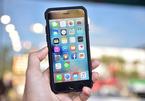 iPhone 9 giá rẻ chuẩn bị được sản xuất hàng loạt