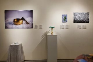 Photographer Phuong Hoang holds exhibition in Hanoi