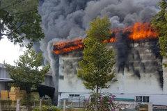 Cháy dữ dội công ty đệm mút, khói đen ngút trời ở Bình Dương