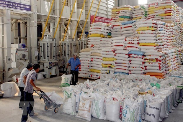rice exports,884.94 million USD,year-on-year rise of 92.58 percent,Philippines,goods items,lions share of exports,high quality rice