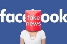 New decree details fines for bad behaviour on social networks