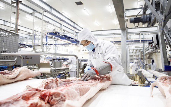 Agro processing gets tidal wave of investment