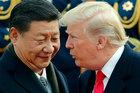 Cú giáng tồi tệ chưa từng có, 'Thiên nga đen' đe doạ Donald Trump