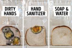 Cô giáo làm thí nghiệm: Rửa tay bằng xà phòng và nước ấm diệt vi khuẩn hiệu quả