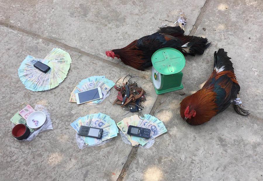 đánh bạc,đá gà,An Giang,Tiền Giang