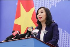 Vietnam ready to repatriate Vietnamese citizens from China