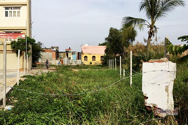 TP.HCM tính chuyển gần 400ha đất nhiễm phèn vùng ven để phát triển đô thị