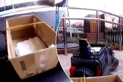 Dùng xe điều khiển từ xa mua thực phẩm phòng virus corona