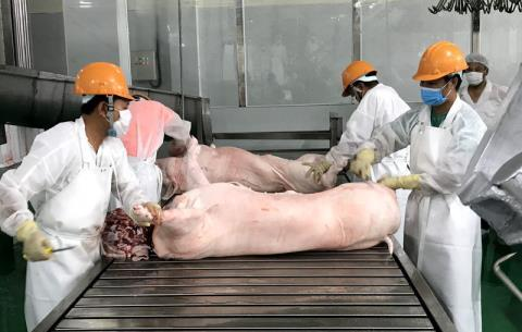 Vietnam to import 100,000 tons of pork in Q1