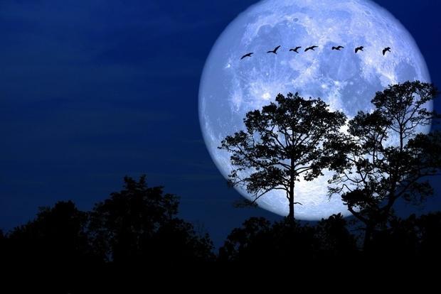 trăng tròn,siêu trăng,mặt trăng,trái đất,thiên văn