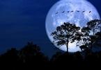 Siêu trăng tuyết đầu tiên của thập kỷ sẽ xuất hiện vào ngày mai