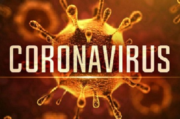 Vì sao virus corona chỉ 'thích' tấn công phổi?
