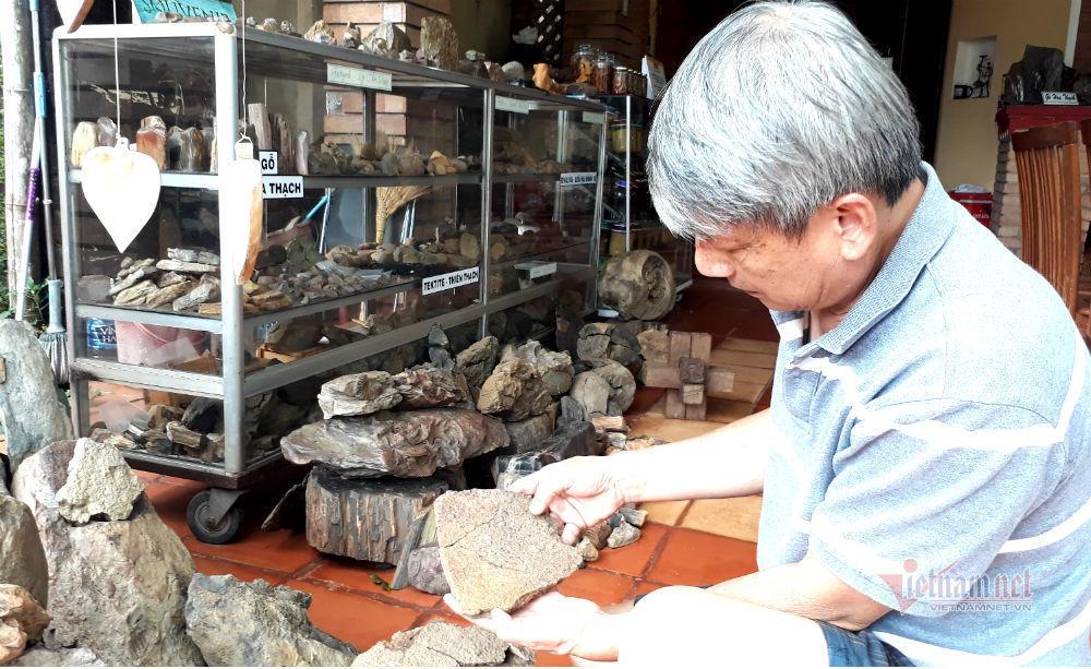 Bảo tàng hóa thạch có một không hai của 'gã khùng' nơi phố núi