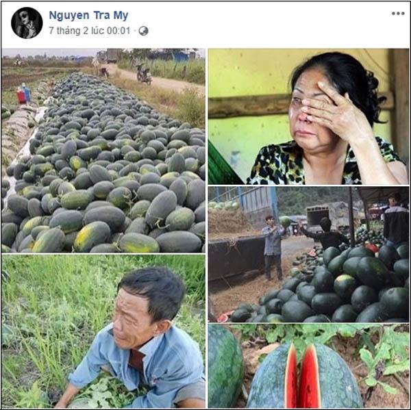 Tăng Thanh Hà, Trà My Idol mua trăm kg dưa hấu ủng hộ nông dân