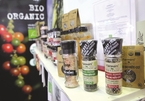 Vietnam's pepper market faces falling prices