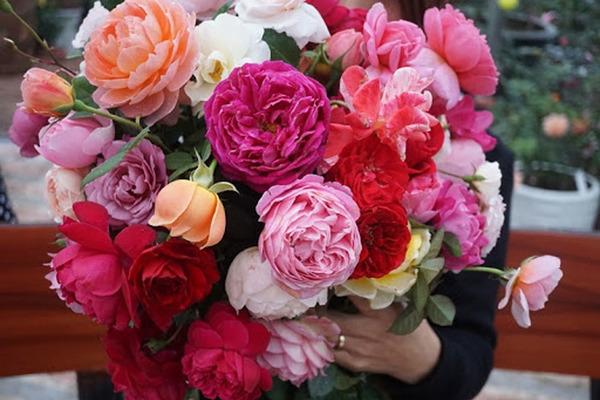 8 gợi ý quà tặng dành cho các cặp đôi dịp Valentine