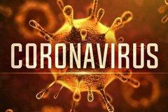 Hoãn tòa vì bị cáo sợ lây virus corona