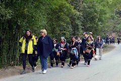 Coronavirus impact sends int'l tourist arrivals to Vietnam tumbling