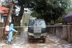 Avian flu strain spreads in four localities in Vietnam