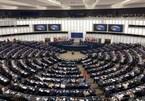 EVFTA, EVIPA unleash market potential for European firms