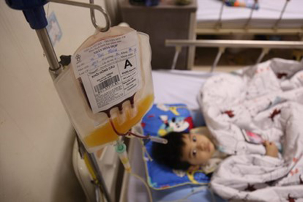 Viện Huyết học cạn kiệt nhóm máu A, bệnh nhân chia nhau từng bịch
