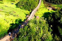 'Kiệt tác' giữa khu rừng tràm đẹp nhất Việt Nam