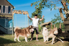 Puppie cafes thriving in Central Highlands