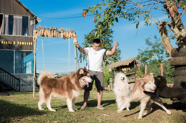 Central Highlands,Dak Lak,puppie cafes thriving,tourists,cute puppies