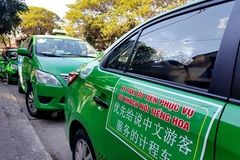 Quang Nam launches separate taxis for Chinese-speaking people