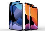 """Apple vừa xác nhận iPhone 12 không có """"tai thỏ""""?"""