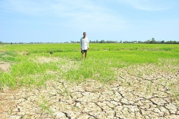 Salinity intrusion in Mekong Delta exceeds record level from 2016