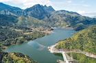Nuôi loài cá 'quý tộc' ở hồ nước ngọt nhân tạo cao nhất Việt Nam