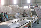 Vietnam needs to find new rice markets to replace China: experts
