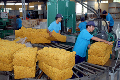 VN firms seek new raw material sources
