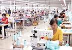 Material autonomy key for Vietnam to fully exploiting EVFTA