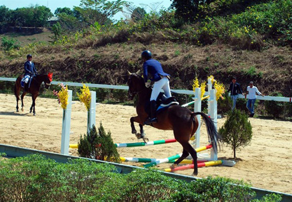 Lam Dong,Olympic horse riding club,sports news