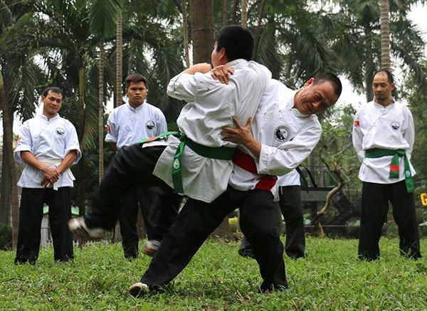 Martial arts,Việt vũ đạo,master Nguyen Cong Tot,martial arts master,share skills,trainers