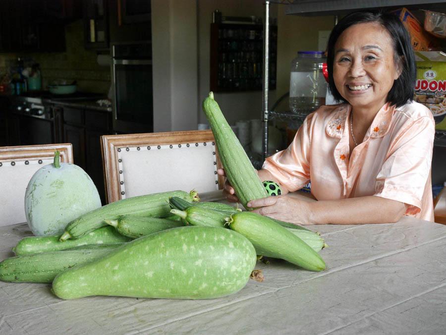 Vườn rau 1000 m2 trên đất Mỹ của dược sĩ gốc Việt