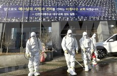 Vietnamese warned not to travel to coronavirus-hit areas in RoK
