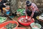 Trung Quốc cho rằng Covid-19 không bắt nguồn từ chợ hải sản Vũ Hán