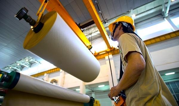 nhà máy giấy