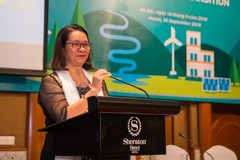 'Environment hero' Nguy Thi Khanh receives US$2 million award