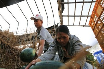 The 'farm produce rescue' method
