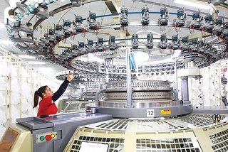 More giant foreign firms plan to shift investment into Vietnam