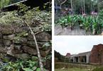 Hành trình khám phá khác ngoài tâm linh tại Yên Tử
