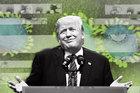Dịch Covid-19 'bủa vây' ông Trump