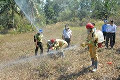 Early forest fire warnings vital