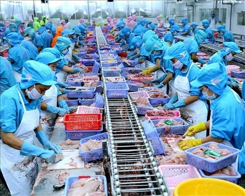 VN seafood exporters not too worried about COVID-19