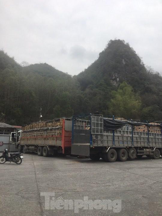 Khôi phục mua bán hàng hóa cư dân biên giới Tân Thanh - Pò Chài